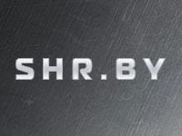 Белорусский игровой хостинг SHR.BY