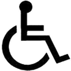 Спрей Инвалид
